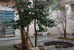 maison traditionnelle avec des arbres