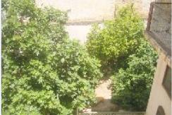 riad avec un bon jardin