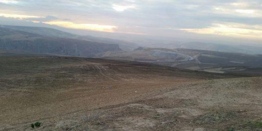 Lot terrain titré de 8 hectares à vendre