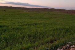 Ferme 125 hectares à vendre