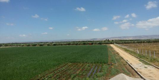 un terrain agricole titré