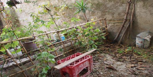 Une ruine avec un jardin à vendre dans la Médina