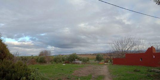 Terrain de 1.1 hectare
