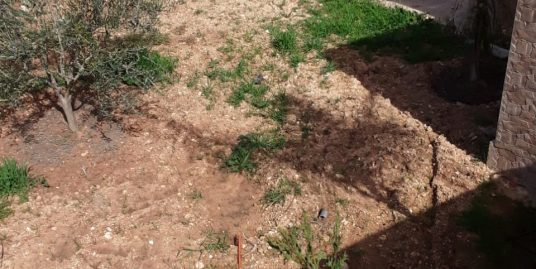Ferme  a vendre de 2 hectares Avec villa